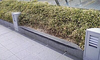 """「延髄切り」は英語で"""" Enzuigiri """"(マジです)"""